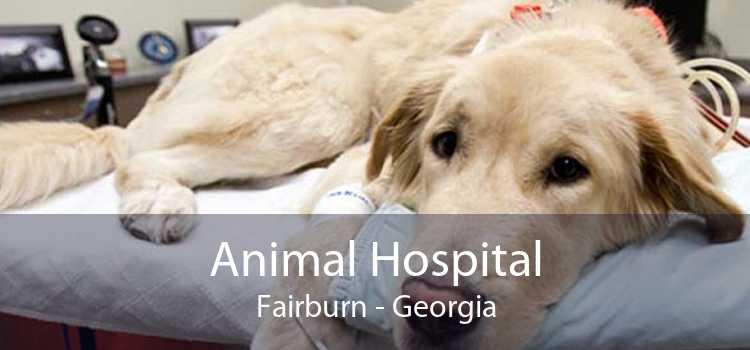 Animal Hospital Fairburn - Georgia