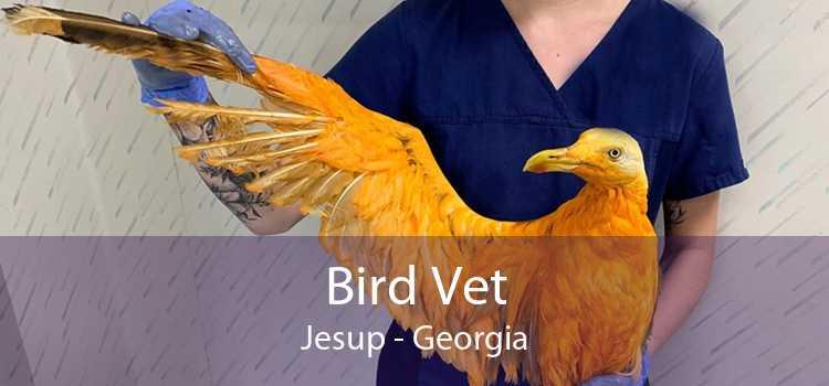 Bird Vet Jesup - Georgia