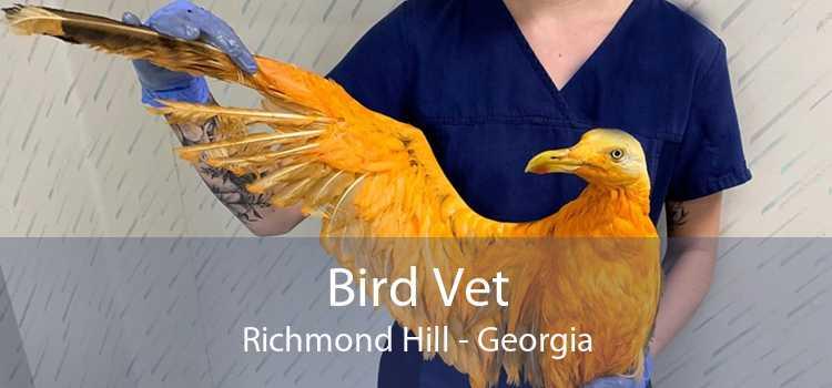 Bird Vet Richmond Hill - Georgia