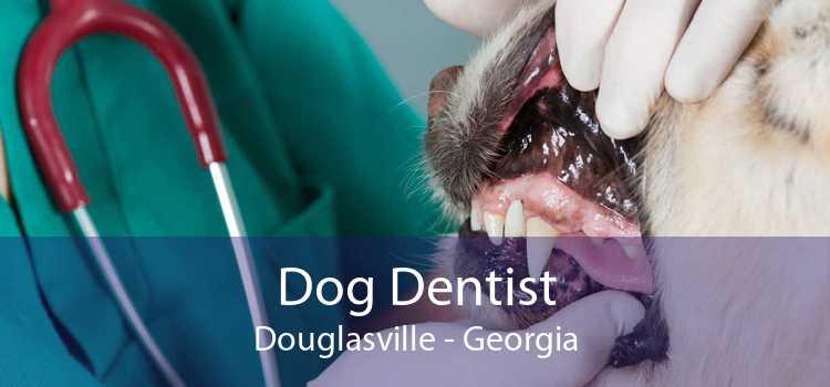Dog Dentist Douglasville - Georgia