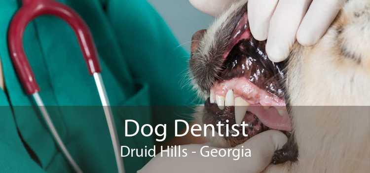 Dog Dentist Druid Hills - Georgia