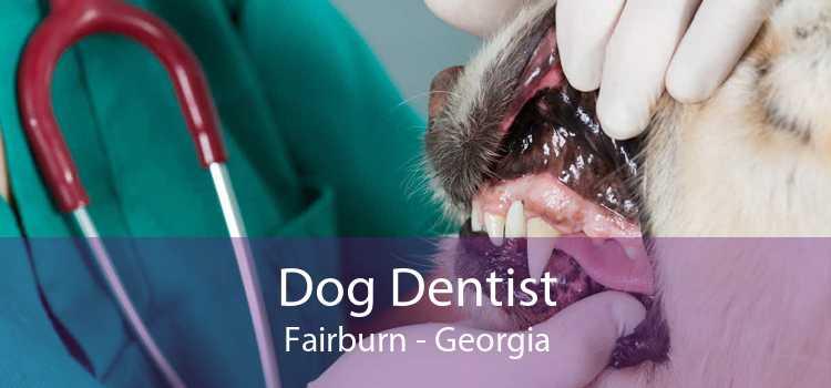 Dog Dentist Fairburn - Georgia