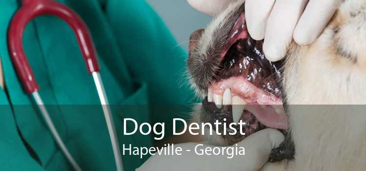 Dog Dentist Hapeville - Georgia