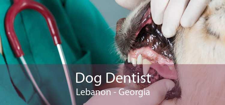 Dog Dentist Lebanon - Georgia