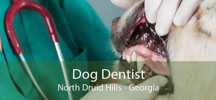 Dog Dentist North Druid Hills - Georgia