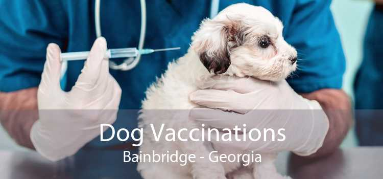 Dog Vaccinations Bainbridge - Georgia