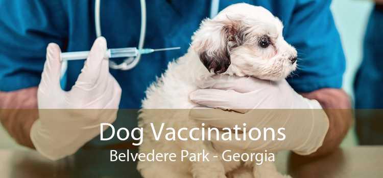 Dog Vaccinations Belvedere Park - Georgia