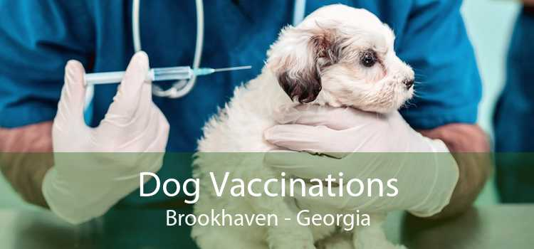 Dog Vaccinations Brookhaven - Georgia