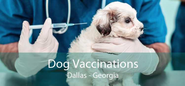 Dog Vaccinations Dallas - Georgia