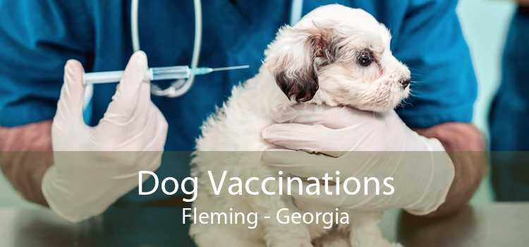Dog Vaccinations Fleming - Georgia