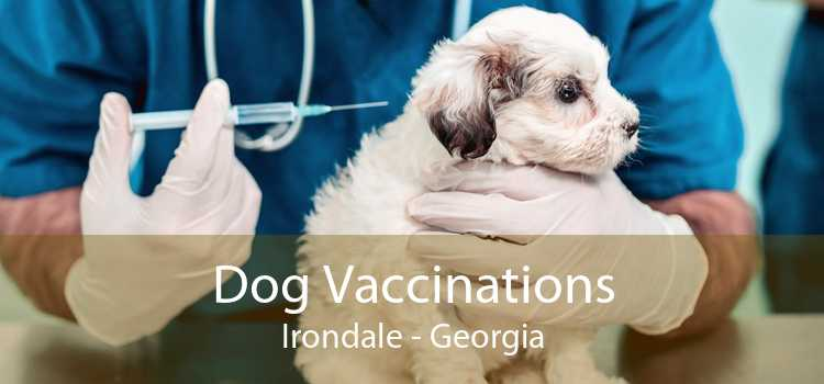 Dog Vaccinations Irondale - Georgia