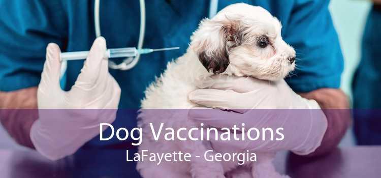 Dog Vaccinations LaFayette - Georgia