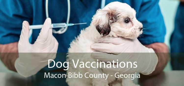 Dog Vaccinations Macon Bibb County - Georgia