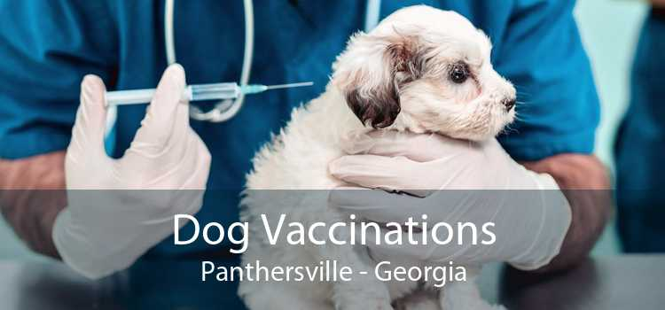 Dog Vaccinations Panthersville - Georgia