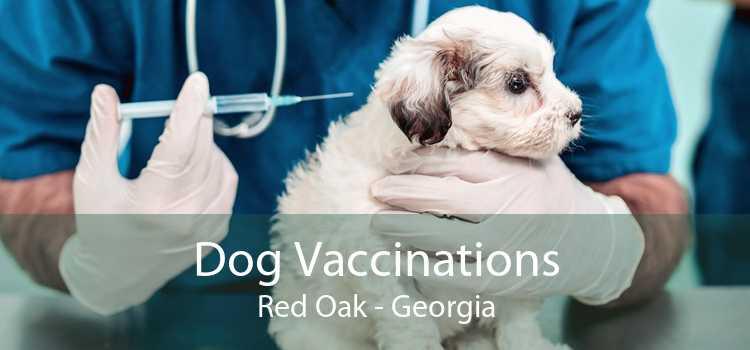 Dog Vaccinations Red Oak - Georgia