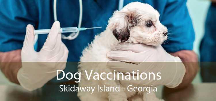 Dog Vaccinations Skidaway Island - Georgia