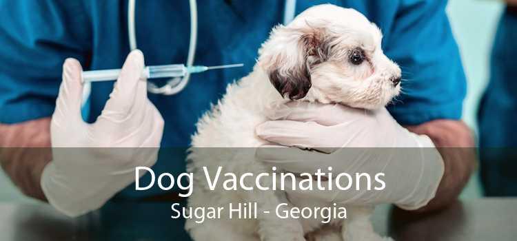 Dog Vaccinations Sugar Hill - Georgia