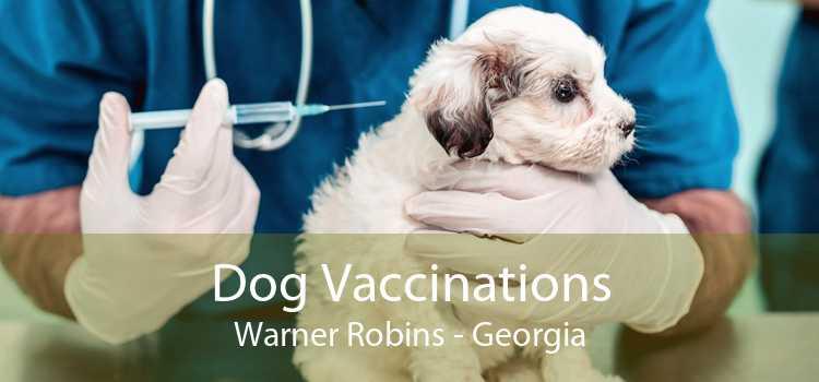 Dog Vaccinations Warner Robins - Georgia
