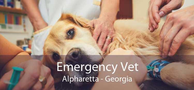 Emergency Vet Alpharetta - Georgia