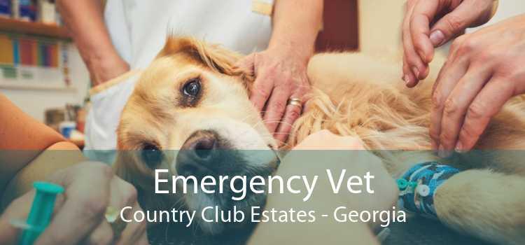 Emergency Vet Country Club Estates - Georgia
