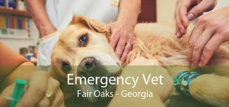 Emergency Vet Fair Oaks - Georgia