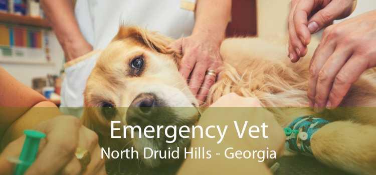 Emergency Vet North Druid Hills - Georgia
