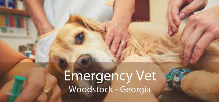Emergency Vet Woodstock - Georgia