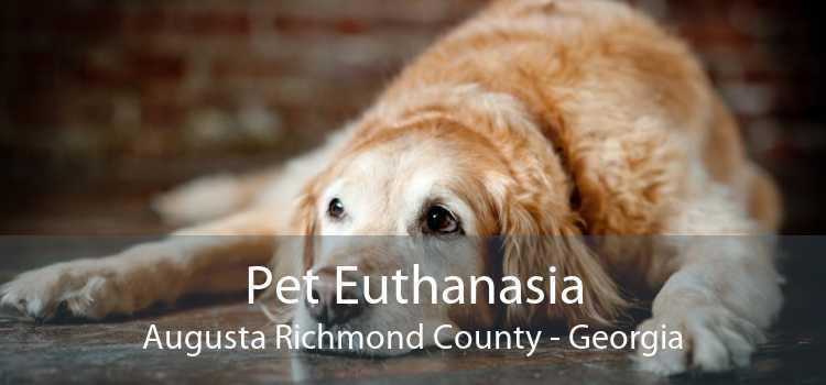 Pet Euthanasia Augusta Richmond County - Georgia