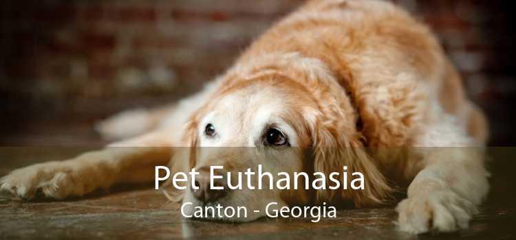 Pet Euthanasia Canton - Georgia