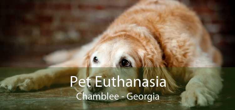 Pet Euthanasia Chamblee - Georgia