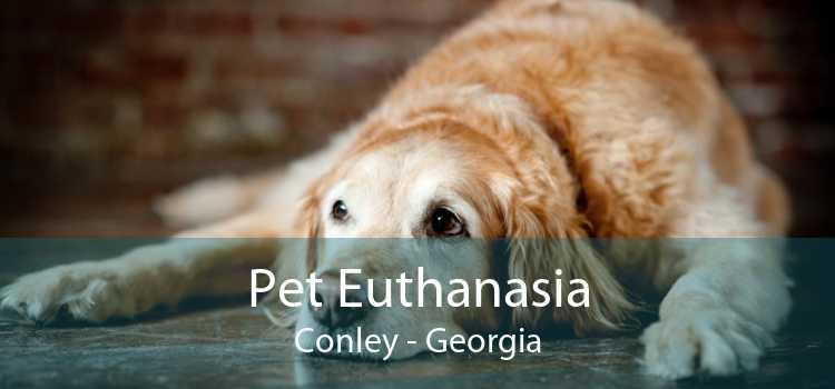 Pet Euthanasia Conley - Georgia