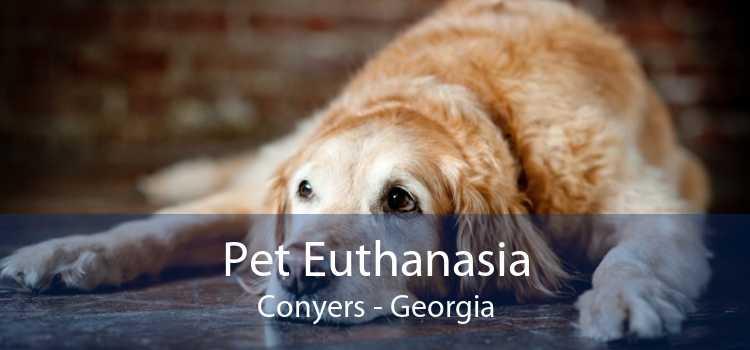 Pet Euthanasia Conyers - Georgia