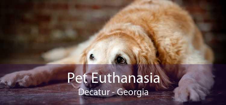 Pet Euthanasia Decatur - Georgia