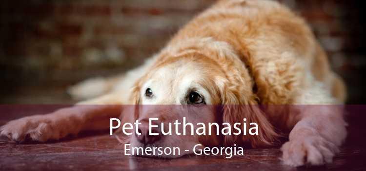 Pet Euthanasia Emerson - Georgia