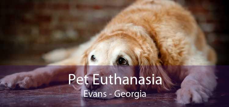 Pet Euthanasia Evans - Georgia