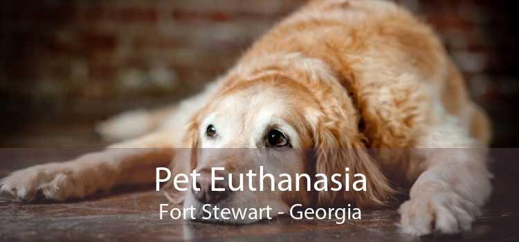 Pet Euthanasia Fort Stewart - Georgia