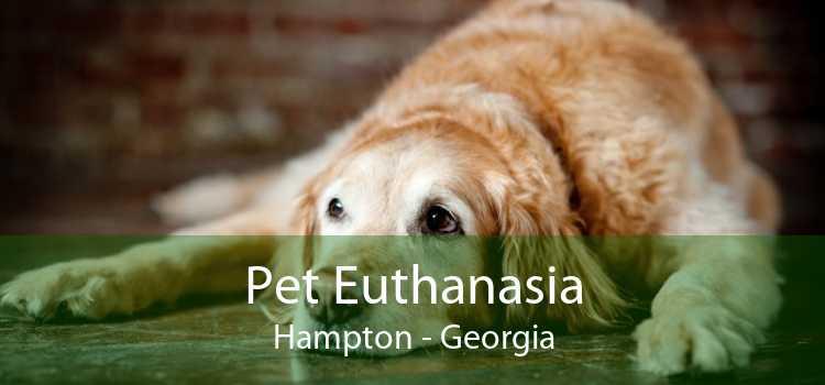 Pet Euthanasia Hampton - Georgia