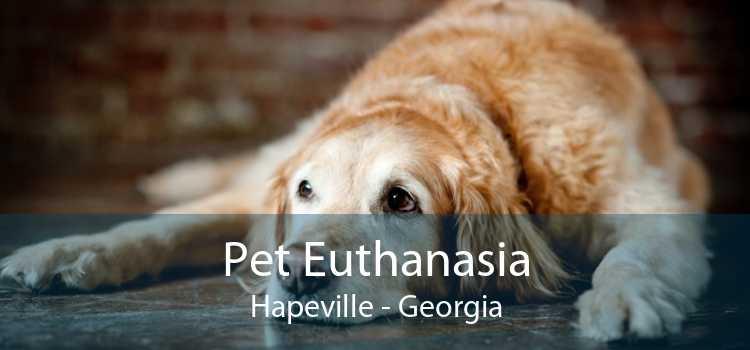 Pet Euthanasia Hapeville - Georgia