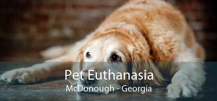 Pet Euthanasia McDonough - Georgia