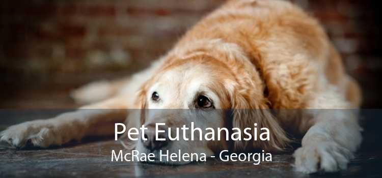 Pet Euthanasia McRae Helena - Georgia