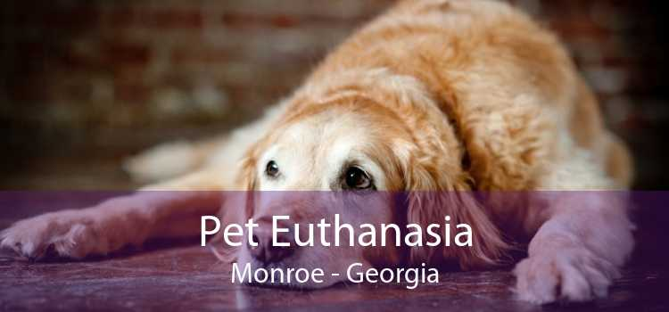 Pet Euthanasia Monroe - Georgia