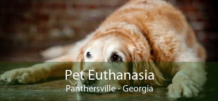 Pet Euthanasia Panthersville - Georgia