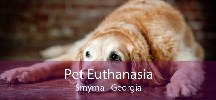 Pet Euthanasia Smyrna - Georgia