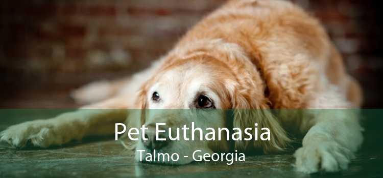 Pet Euthanasia Talmo - Georgia