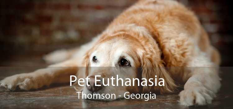 Pet Euthanasia Thomson - Georgia