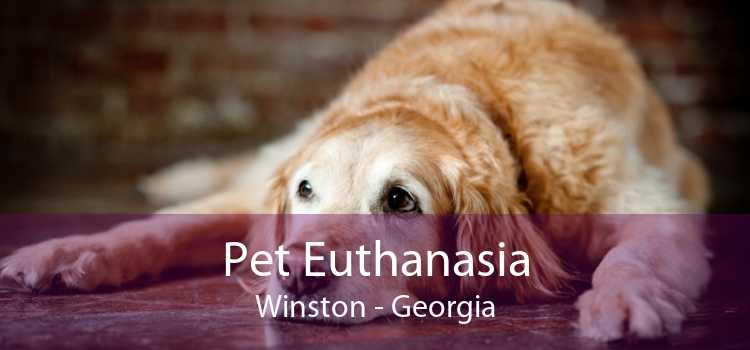 Pet Euthanasia Winston - Georgia