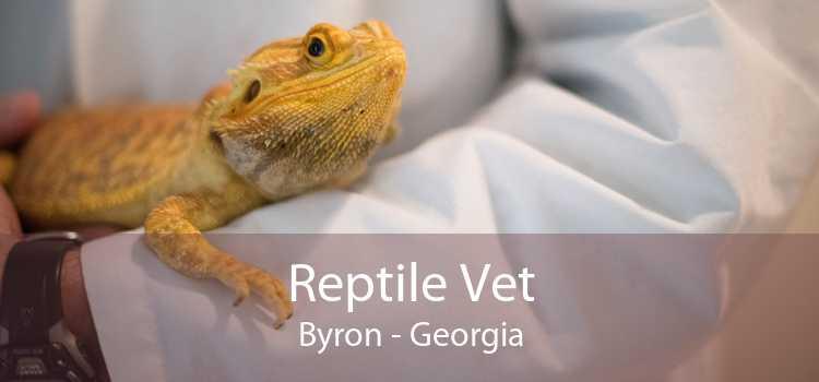 Reptile Vet Byron - Georgia
