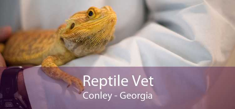 Reptile Vet Conley - Georgia