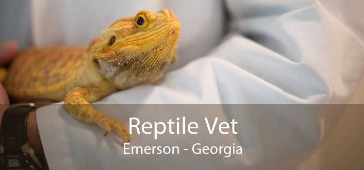 Reptile Vet Emerson - Georgia