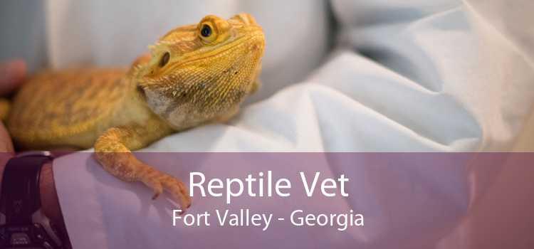 Reptile Vet Fort Valley - Georgia